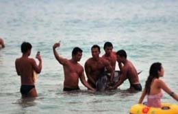 三亚海豚因受伤搁浅 无知游客抓其合影致呛水死亡