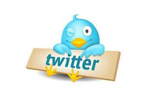 老外卖Twitter粉丝 10个月赚12万