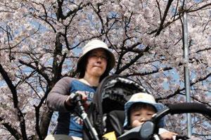 日本少子化的背后:日本年轻人拒绝性爱