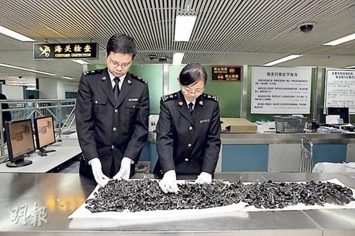 香港游客带逾千蟒蛇胆过关被检获(图)