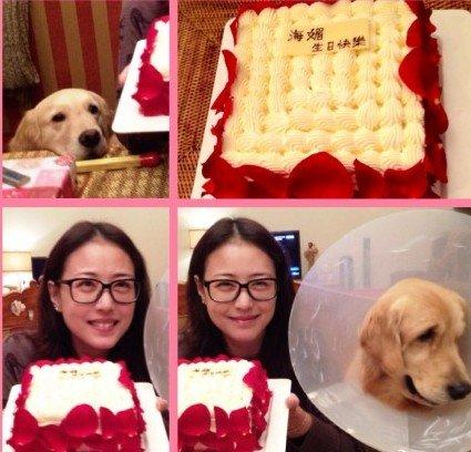 周海媚素颜庆47岁生日 网友调侃最开心的是狗狗