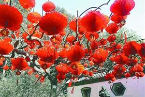 """春节出游 """"涨""""声一片"""