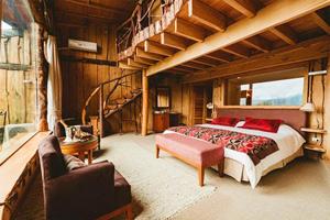 以树为屋 奢享智利奢华环保酒店