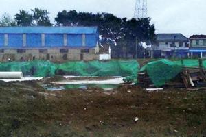 江苏非法用地被刷绿伪装成耕地 被指为应付检查