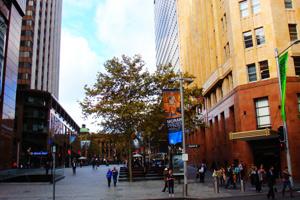 悉尼:现实与虚幻的流浪汉之城