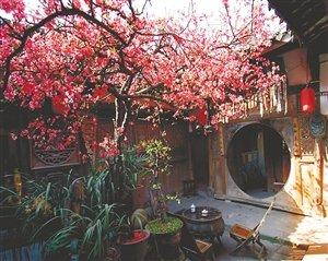 阆中古城的花漾年华