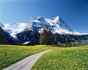 到瑞士邂逅最逍遥的春天