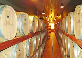 意大利赫玛的酒庄