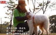 """南都人物志:""""善待""""猫狗保护者"""