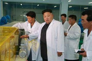 金正恩视察葛麻食品厂 称赞工厂犹如宫殿