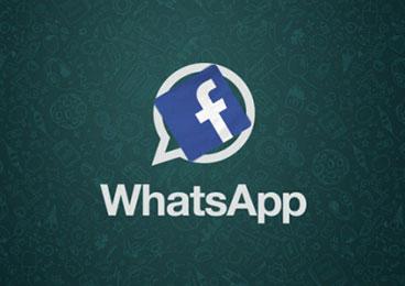 Facebook完购WhatsApp CEO库姆将加入董事会