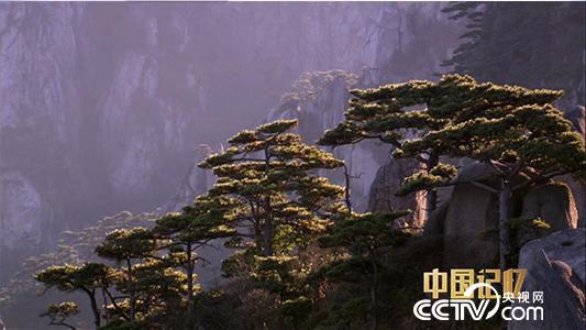 【中国记忆】中国自然文化双遗产