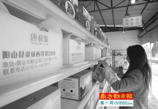广东农民去年双11网上卖857万只鸡 70%还没发货 - 七色社会 - 七色社会